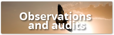 Observations and audits module in HSEQ Online